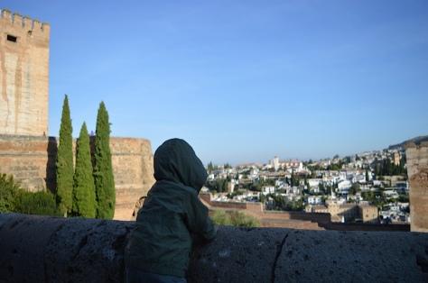 o Albaicín visto da Alcazaba