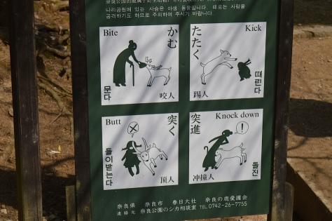 Aviso de cuidado com os cervos