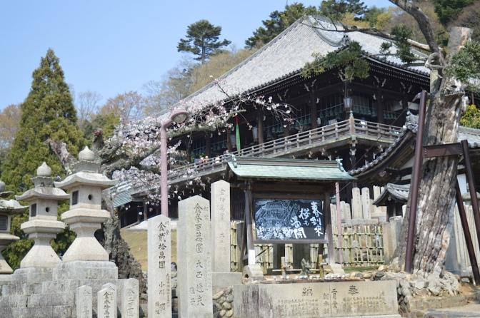 Viajando pelo Japão: Osaka e Nara