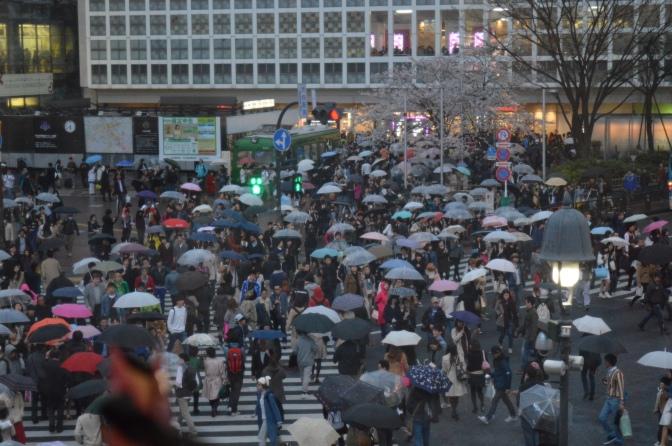 Viajando pelo Japão: Shibuya e Harajuku – Tokyo
