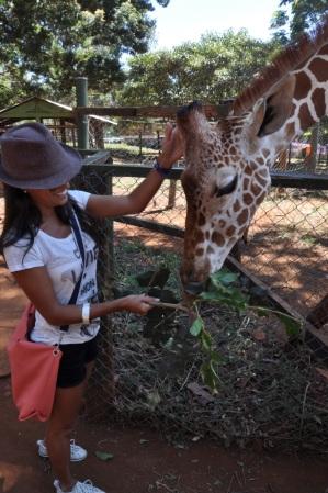 Girafa em Nairobi