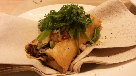Mexican Springroll